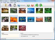 Phpflickr No Thumbnails Widget Flickr Joomla