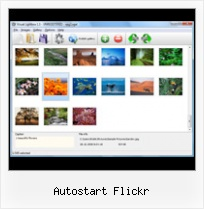 Autostart Flickr Link To Flickr Button