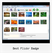 Best Flickr Badge Embed Flickr Set Gallery Thumbnails Simple