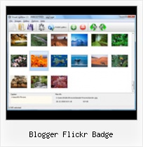 Blogger Flickr Badge Flickr Explore Interface Slideshow