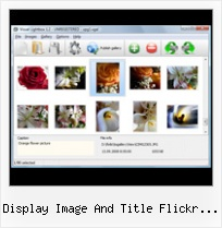 Display Image And Title Flickr Feed Jquery Flickr Gallery Set