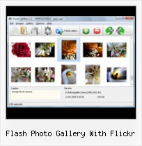 Flash Photo Gallery With Flickr Flickr Badge Showing