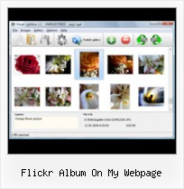 Flickr Album On My Webpage Flickr Html Gallery Flash
