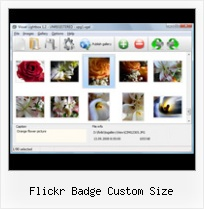 Flickr Badge Custom Size Flickr Thumbnail Gallery For Own Website