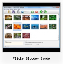 Flickr Blogger Badge Prototype Flickr Feed