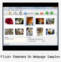 Flickr Embeded On Webpage Samples Flickr Export Plugin