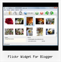 Flickr Widget For Blogger Customize Flickr Badge Blogger Html Css