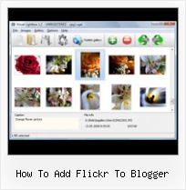 How To Add Flickr To Blogger Sharing Embedding Flickr Maps