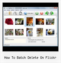 How To Batch Delete On Flickr Flickr Mini Gallery Disable Lightbox