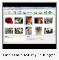 Post Flickr Gallery To Blogger Drupal Flickr Like Gallery