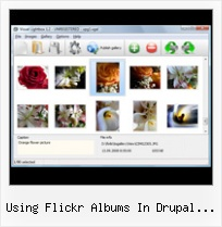 Using Flickr Albums In Drupal Website Flickr Id Set Albums